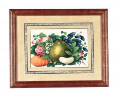 China Trade Watercolor and Gouache Set of Twelve Paintings of Fruit and Flowers - 1917126
