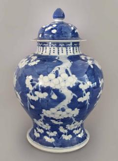 Chinese Export Blue and White Prunus Vase and Lid - 865366