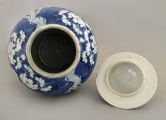 Chinese Export Blue and White Prunus Vase and Lid - 865372