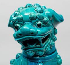 Chinese Large Turquoise Foo Dog - 267277