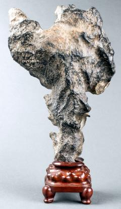 Chinese Scholar Rock Yingde Stone on Display Stand - 1901195