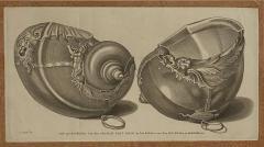 Circa 19th Century Baroque Sea Shell Drinking Cups Engraving - 1849693