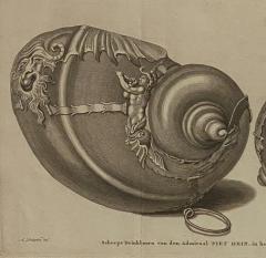 Circa 19th Century Baroque Sea Shell Drinking Cups Engraving - 1849696