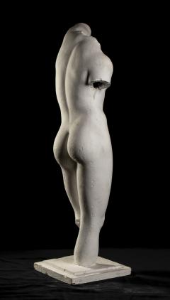 Classical White Plaster Cast Nude Sculpture of Apollo After The Antique - 2137102