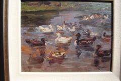 Clovis Terraire Clovis Terraire Ducks on a Pond - 1195346