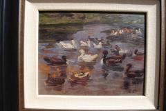 Clovis Terraire Clovis Terraire Ducks on a Pond - 1195347