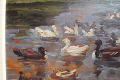 Clovis Terraire Clovis Terraire Ducks on a Pond - 1195348