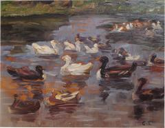 Clovis Terraire Clovis Terraire Ducks on a Pond - 1195365