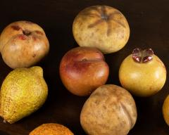 Collection of 18th century marble fruits - 2047314