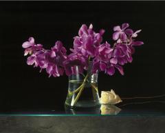 Contemporary Still Life Giclee by Dario Campanile - 2012279