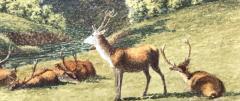 Continental School Deer by Stream  - 759061