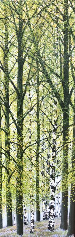 David J Williams Spring Birches - 1613749