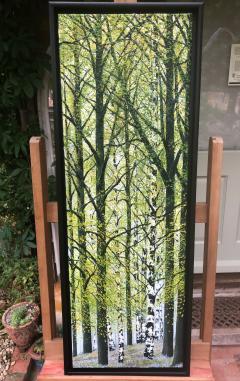 David J Williams Spring Birches - 1613751