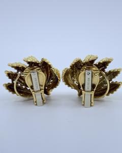 David Webb Gold David Webb Earrings - 1906421