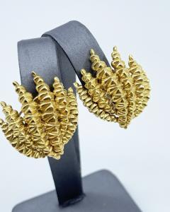 David Webb Gold David Webb Earrings - 1906422
