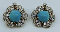 David Webb Turquoise David Webb Earrings - 1775608