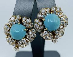David Webb Turquoise David Webb Earrings - 1775609