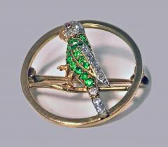 Demantoid Diamond and Ruby Parrot Pin C 1920 - 331092