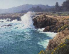 Dennis Doheny Wind Swell Point Lobos - 2130459