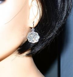 Diamond and Platinum Earrings - 1201264