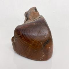 Don Shoemaker JEWELRY Secret Box in Free Form Natural Organic Raw Edge Wood 1970s - 2091222