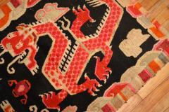Dragon Tibetan Rug rug no r5236 - 1505632