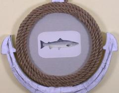 Edward Donovan Pl CCXI Salmon - 1577382
