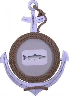Edward Donovan Pl CCXI Salmon - 1595037
