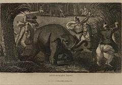 Elephant Capture Engraving England Circa 1820 - 1655258