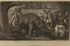 Elephant Capture Engraving England Circa 1820 - 1655950