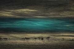 Eloi Ficat CONFINS Turquoise IX Photography - 1408983
