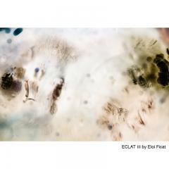 Eloi Ficat ECLAT III Photography - 607291