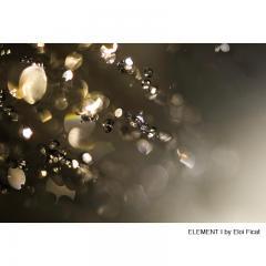 Eloi Ficat ELEMENT I Photography - 607300