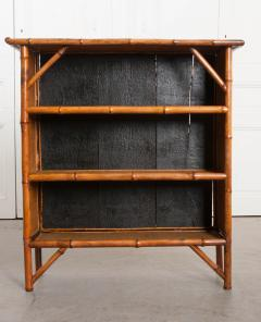English 19th Century Bamboo and D coupage Fish Bookcase - 1099531