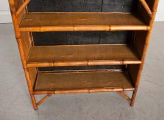 English 19th Century Bamboo and D coupage Fish Bookcase - 1099534