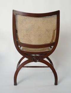 English Regency Style Mahogany and Cane Curule Form Armchairs - 845626
