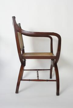 English Regency Style Mahogany and Cane Curule Form Armchairs - 845631