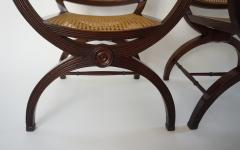 English Regency Style Mahogany and Cane Curule Form Armchairs - 845632