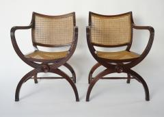 English Regency Style Mahogany and Cane Curule Form Armchairs - 845635