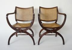 English Regency Style Mahogany and Cane Curule Form Armchairs - 845636