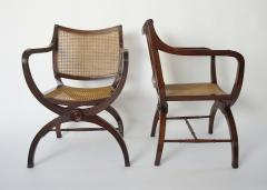English Regency Style Mahogany and Cane Curule Form Armchairs - 845637