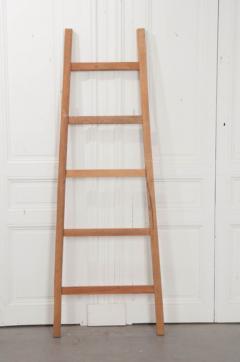 English Vintage Painted Farm Ladder - 1395074