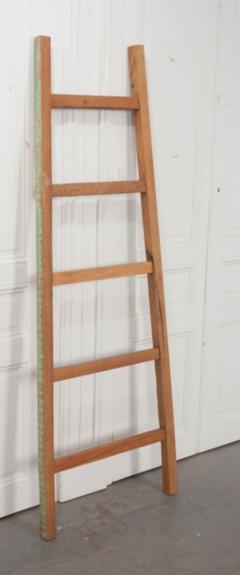 English Vintage Painted Farm Ladder - 1395076