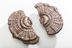 Erin Sullivan Flora Series Bronze Mushroom Door Pulls USA - 1164361