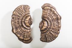 Erin Sullivan Flora Series Bronze Mushroom Door Pulls USA - 1164362