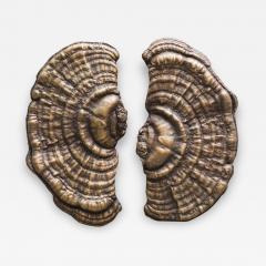 Erin Sullivan Flora Series Bronze Mushroom Door Pulls USA - 1165437