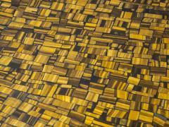 Etienne Allemeersch Tiger eye coffee table - 1830892