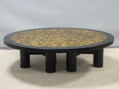 Etienne Allemeersch Tiger eye coffee table - 1830893