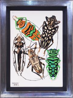 Eugene Alain Seguy Seguy A set of Eight Insects - 1059289