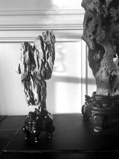 Extraordinary Chinese Scholar Rock Ying Stone on Stand - 1957515